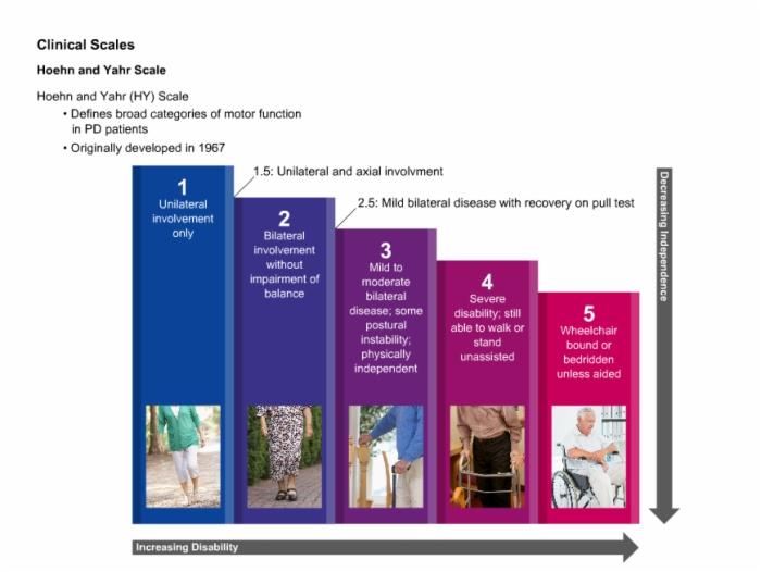 Parkinsons Disease Stages >> Neurology_Parkinsons_Disease